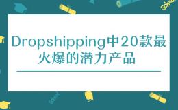 Dropshipping中20款最火爆的潜力产品